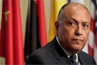 فيديو..وزير الخارجية : سنتخذ كل إجراء لحماية موارد مصر المائية