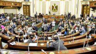 """٣١ طعن على """"انتخابات البرلمان"""" أمام النقض والجيزة تستحوذ على نصيب الأسد"""
