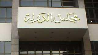 الإدارية العليا تصدر حكمها في 100 طعن على نتيجة المرحلة الثانية لانتخابات النواب